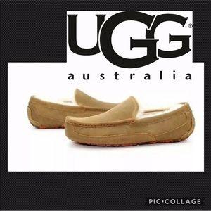 UGG Ascot 10 Driving Moccasins Tan/Orange Shoes